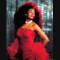 Diana Ross Tribute Acts