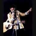 Elvis Impersonator: Sincerely Elvis